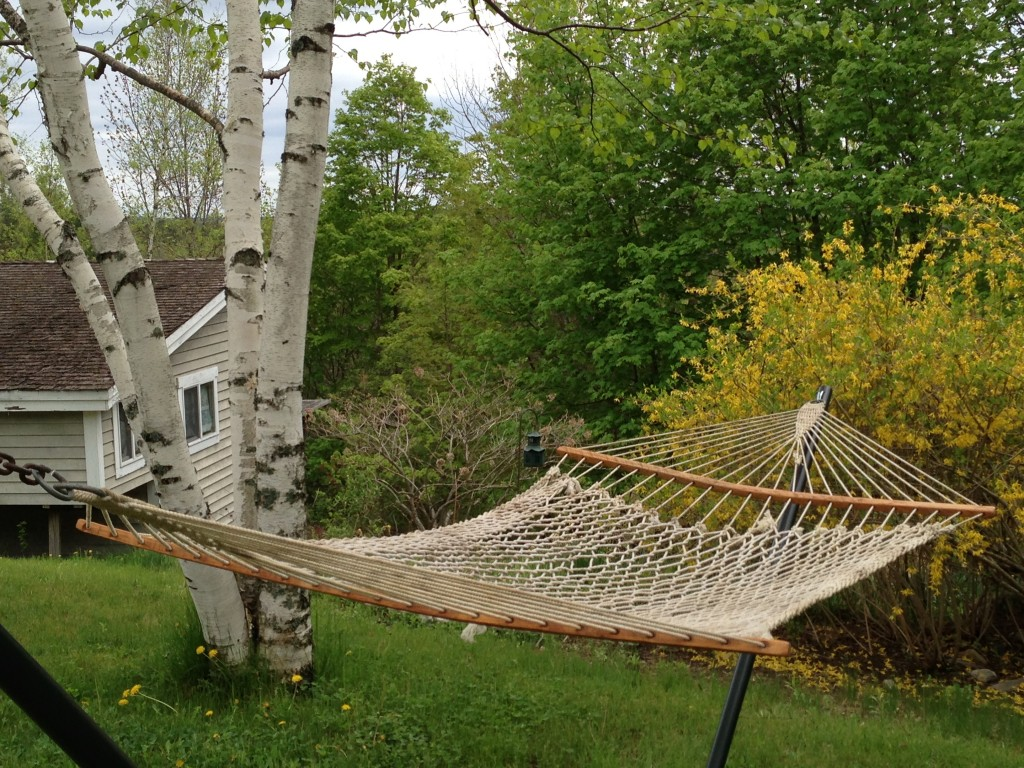 A picture of Diane's hammock