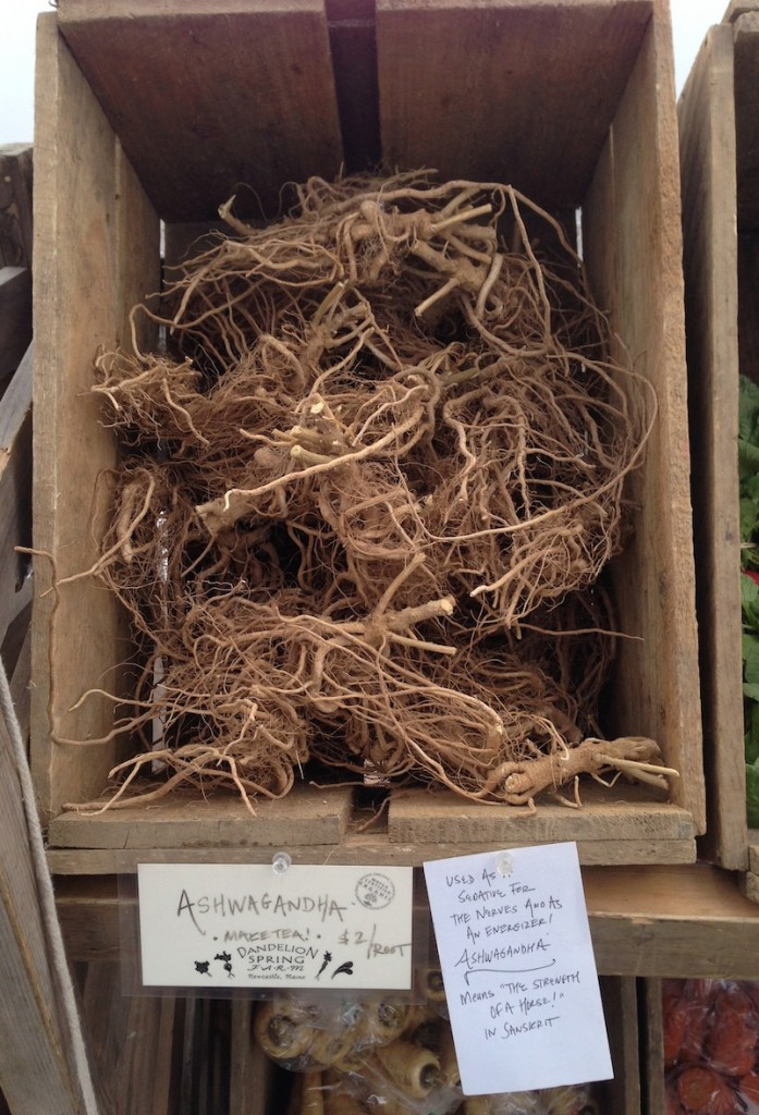 Container of ashwagandha