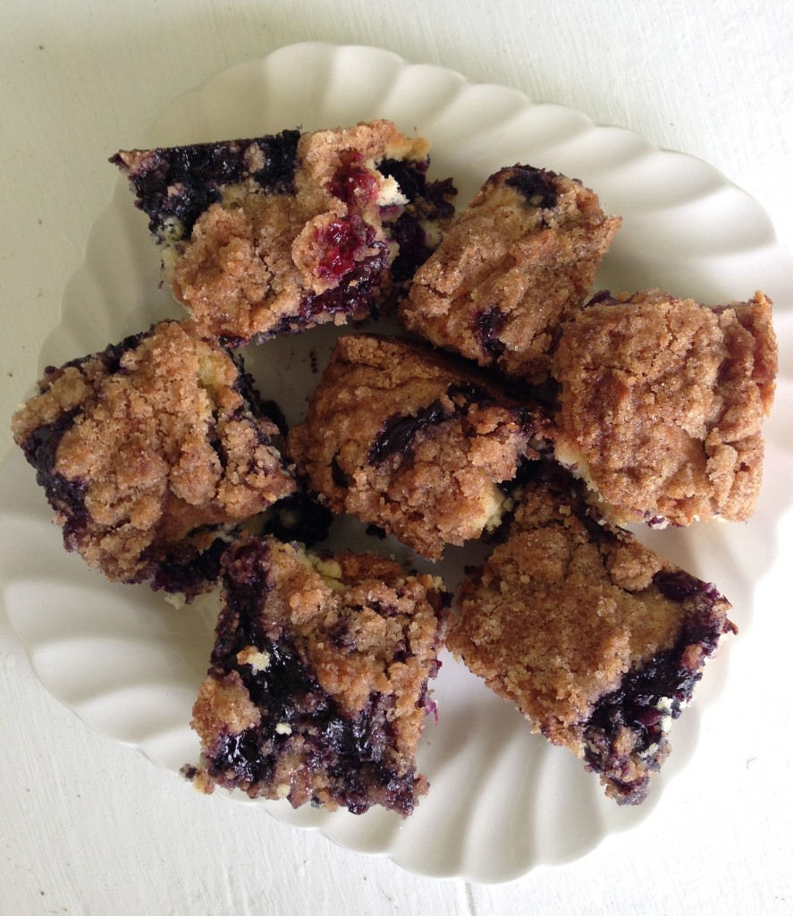 Squares of blueberry crumb cake