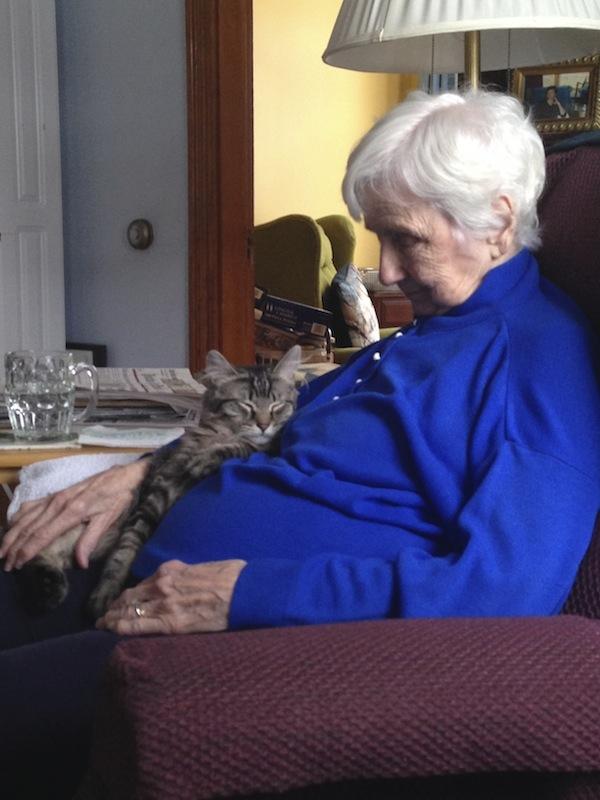 Sleeping cat on sleeping lady's lap