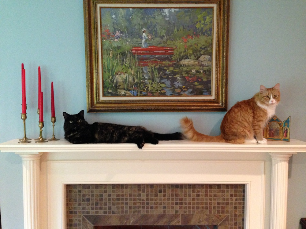 My cats  on the mantle
