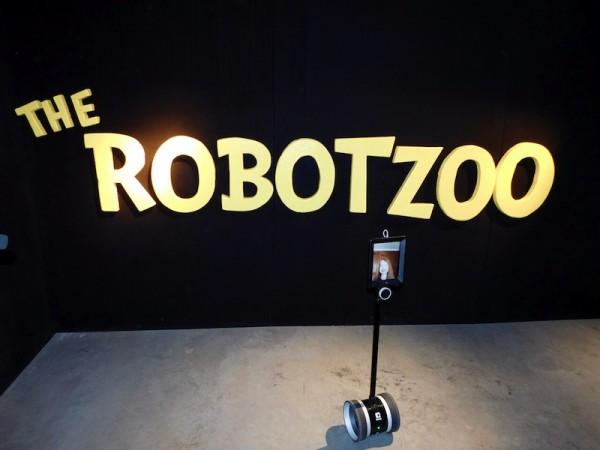 Sophia's robot
