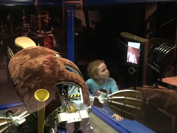 Platypus at Science Center