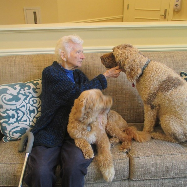Dianes mom with therapy dogs