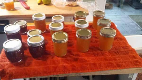 Home made jams and jellies