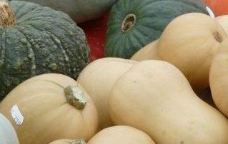 Winter squash recipe