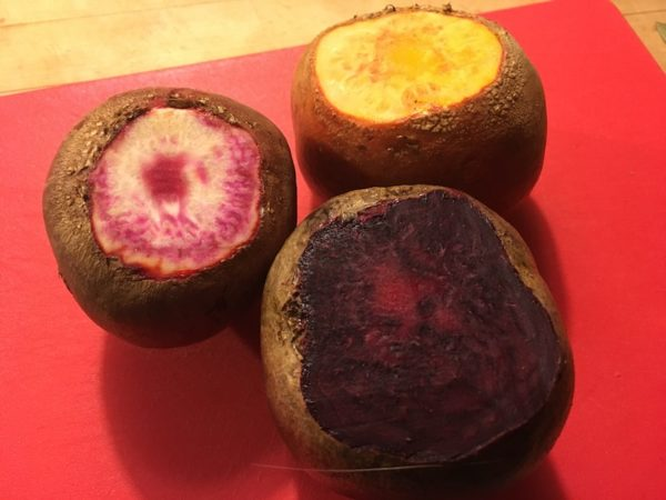 Colored beets