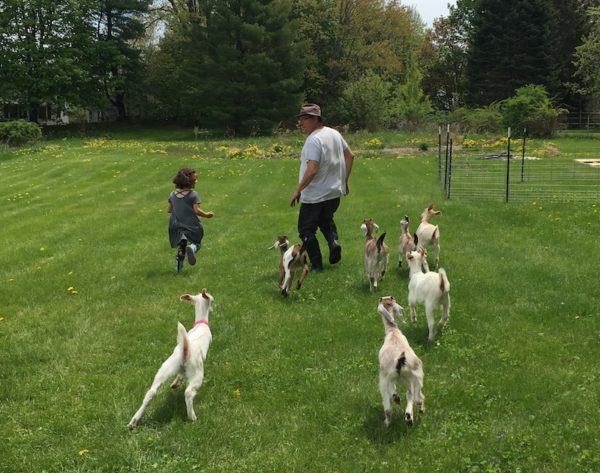 Michael and Nora leading goats