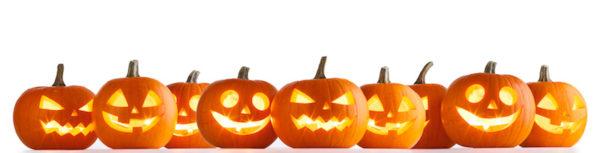 Row of pumpkins