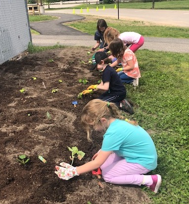 Kids planting in Saco garden