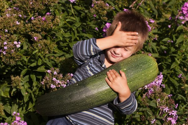 Boy holding a giant zucchini/Adobe stock