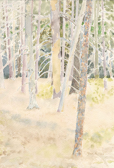 Trees, Woolman Hill, watercolor by Tom Antonik