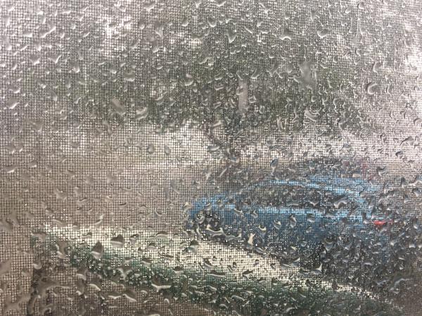 A downpour