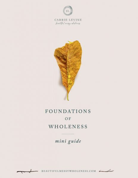 Foundations of Wholeness mini-guide